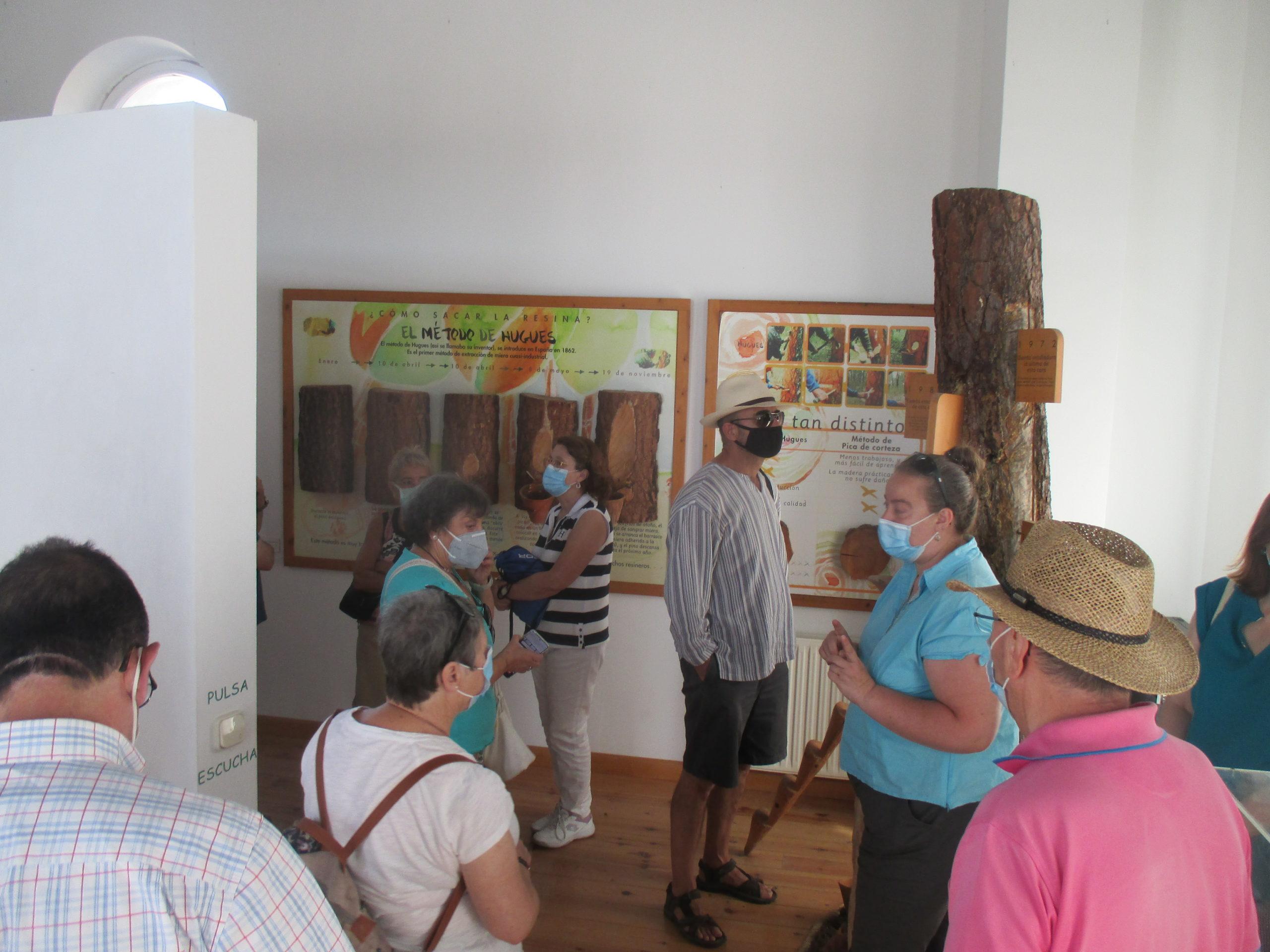 Visita a Quintanas de Gormaz